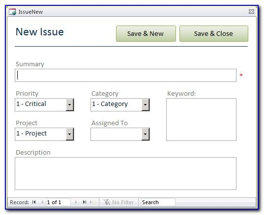 Microsoft Access Issues Database Template