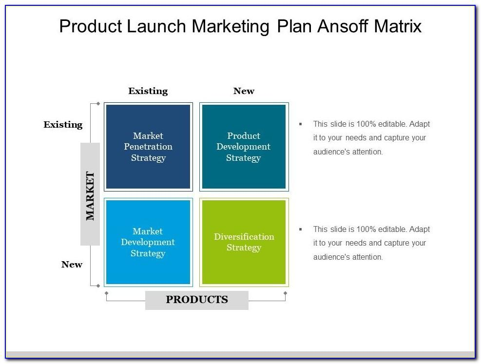 New Product Launch Ppt Template