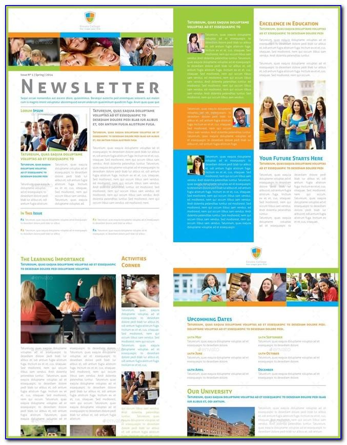 Newsletter Templates Examples Free