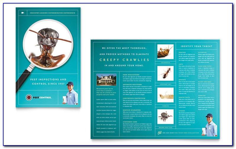 Pest Control Brochure Template