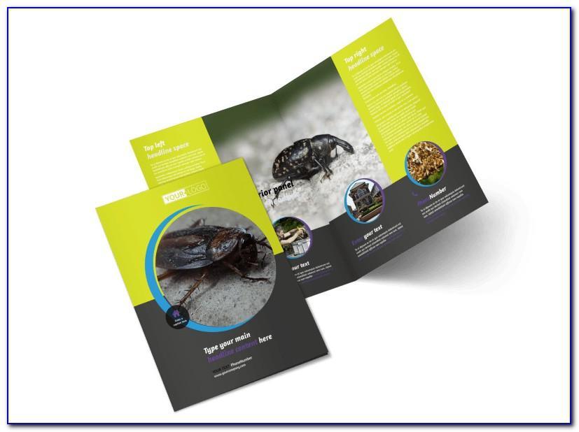 Pest Control Services Brochure Template
