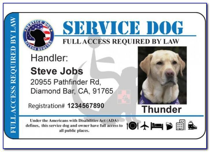 Service Animal Id Card Template