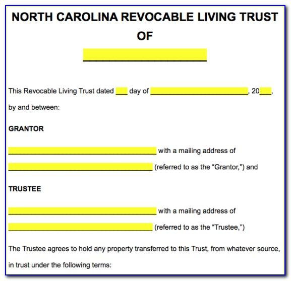 Florida Nfa Trust Template