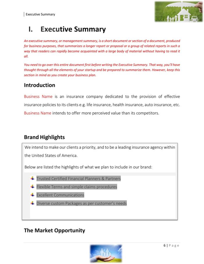 Insurance Agency Business Plan Example