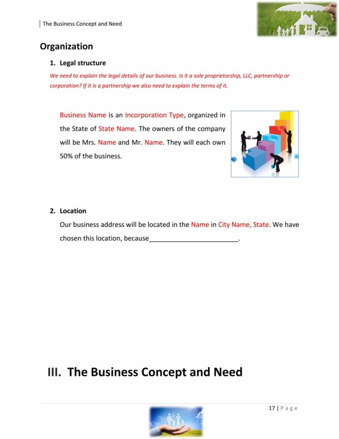 Insurance Sales Agent Business Plan Example