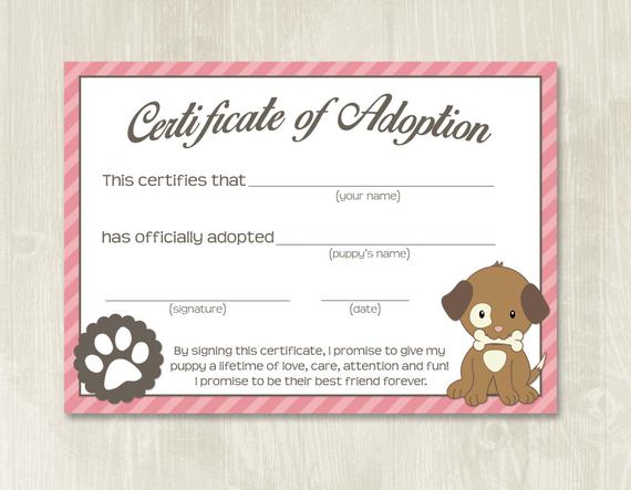 Puppy Certificate Templates