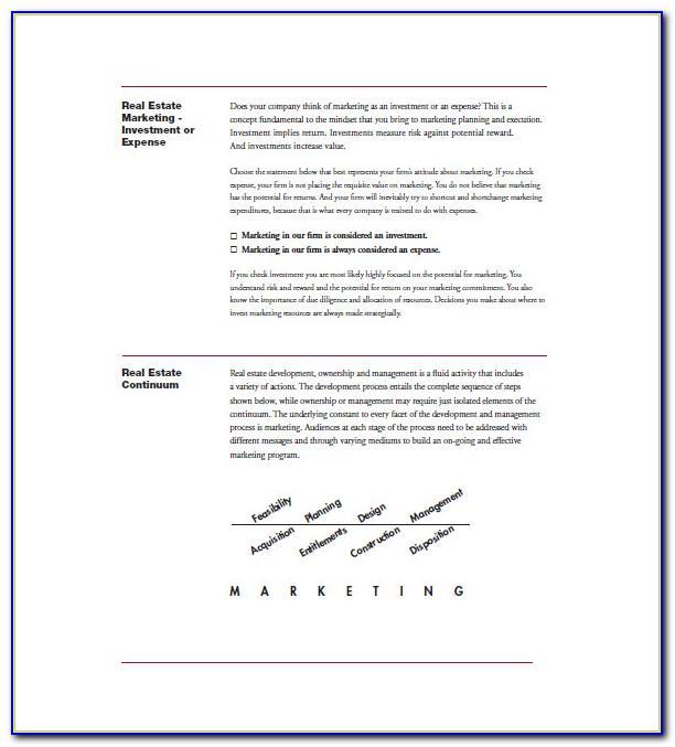 Real Estate Marketing Plan Sample Pdf