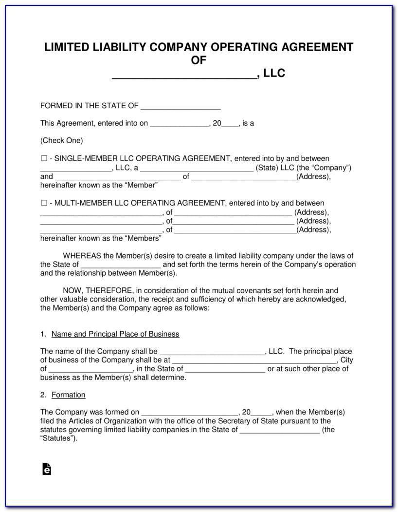 Single Member Llc Operating Agreement Template Download