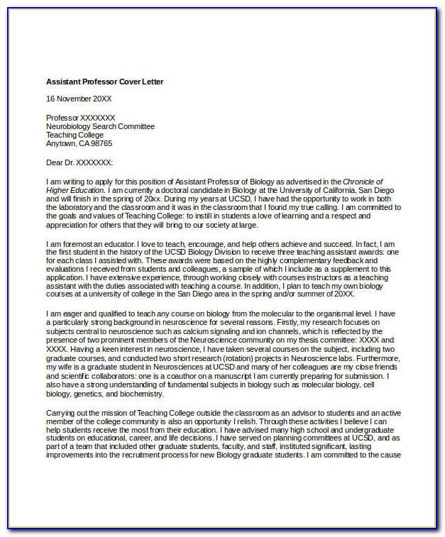 Admissions Counselor Cover Letter No Experience