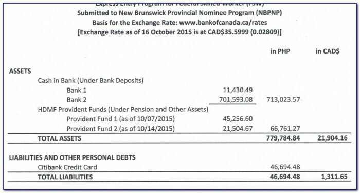 Proof Of Funds Letter Sample From Bank For Canada Immigration