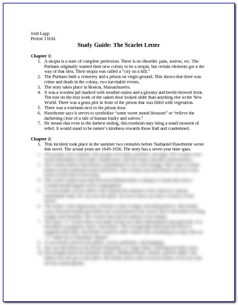 Scarlet Letter Chapter 13 Translation