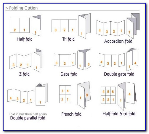 Accordion Fold Brochure Indesign