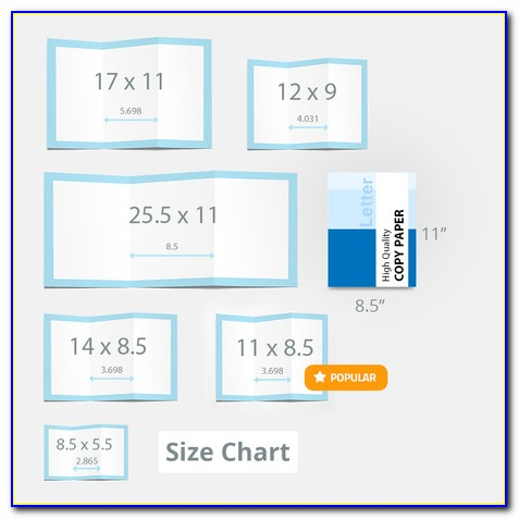Accordion Fold Brochure Template Free