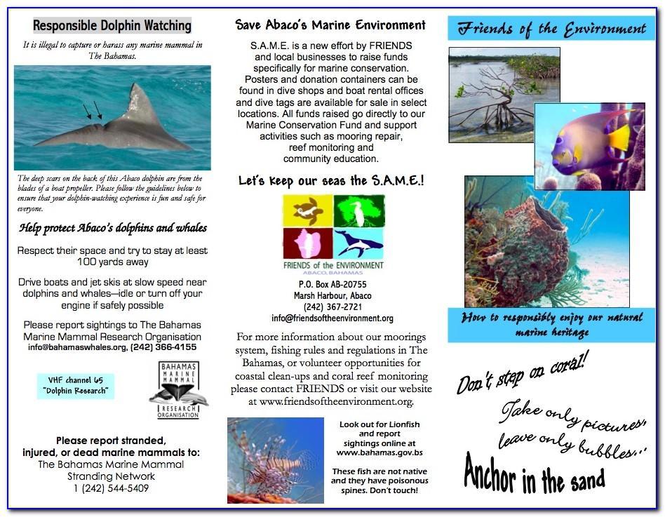 Atlantis Resort Bahamas Brochure