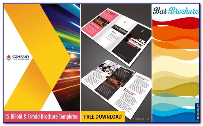 Best Brochure Design For School