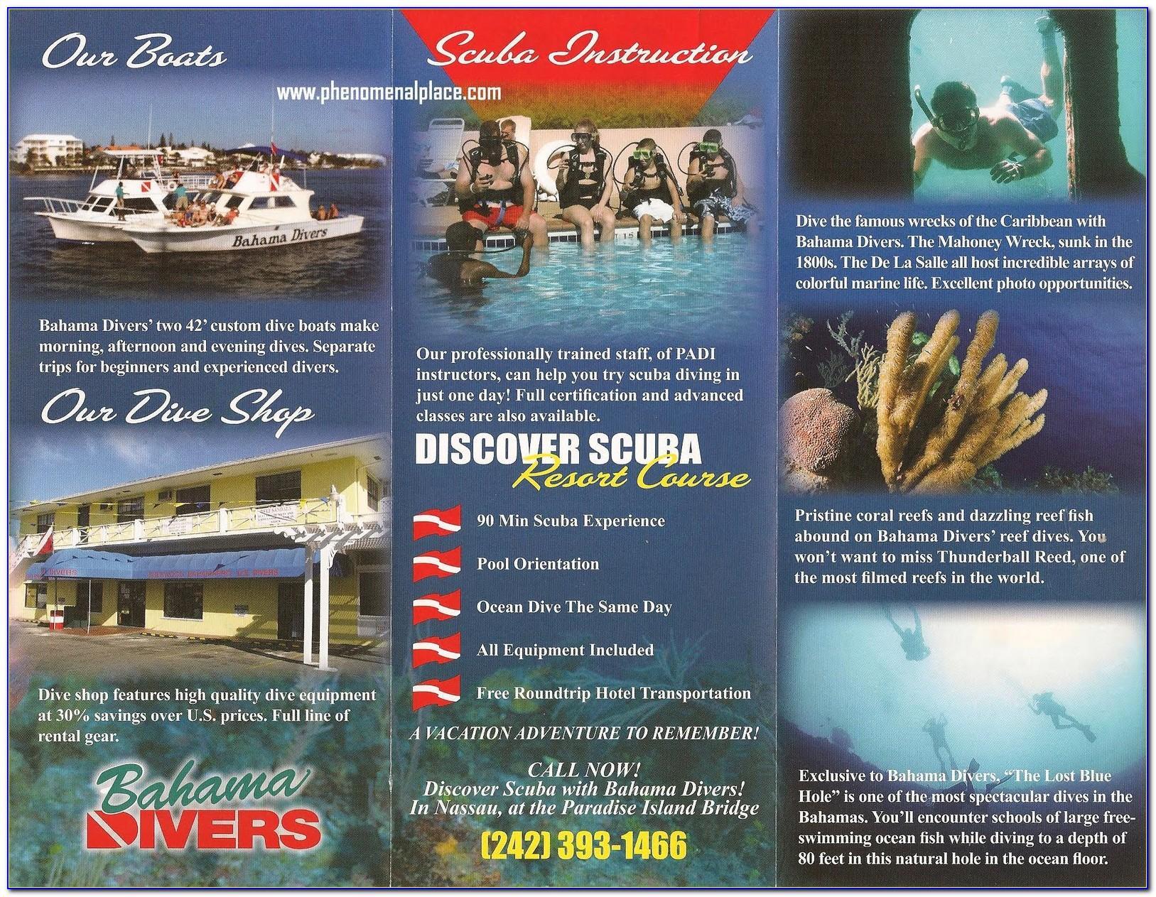 Brochure Accordion Fold