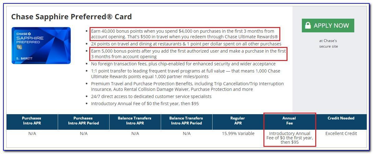 Chase Visa Business Credit Card