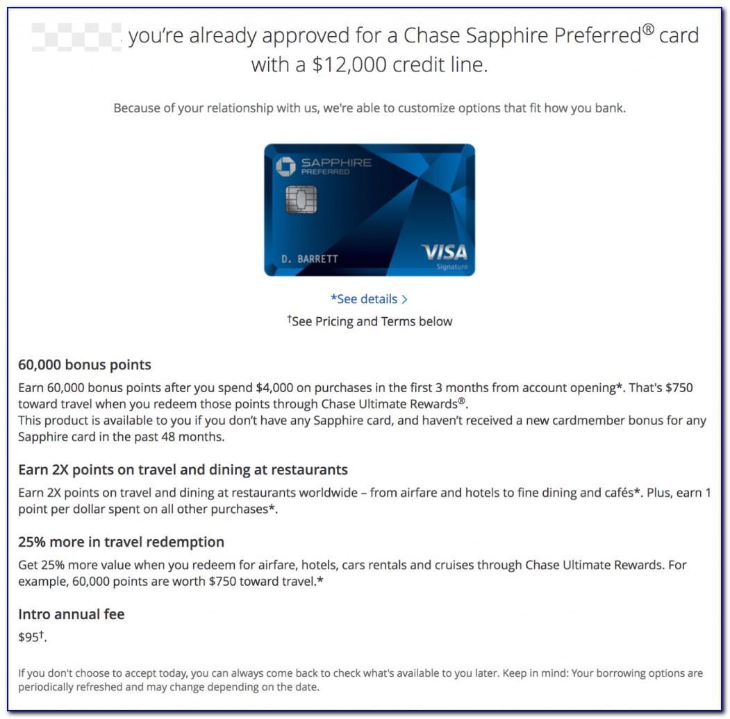 Chase Visa Ink Business Card