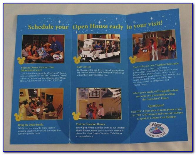 Disney World Brochure Mail