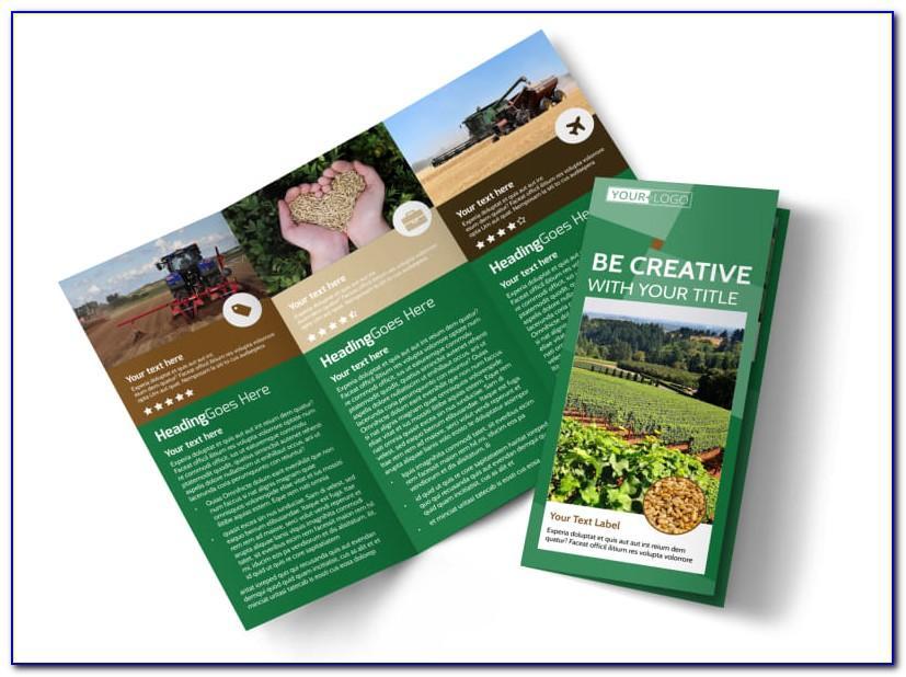 Farm Brochure Free Template