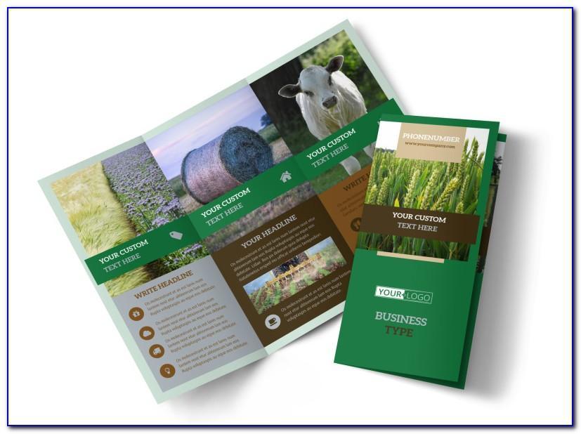 Farm Brochure Template