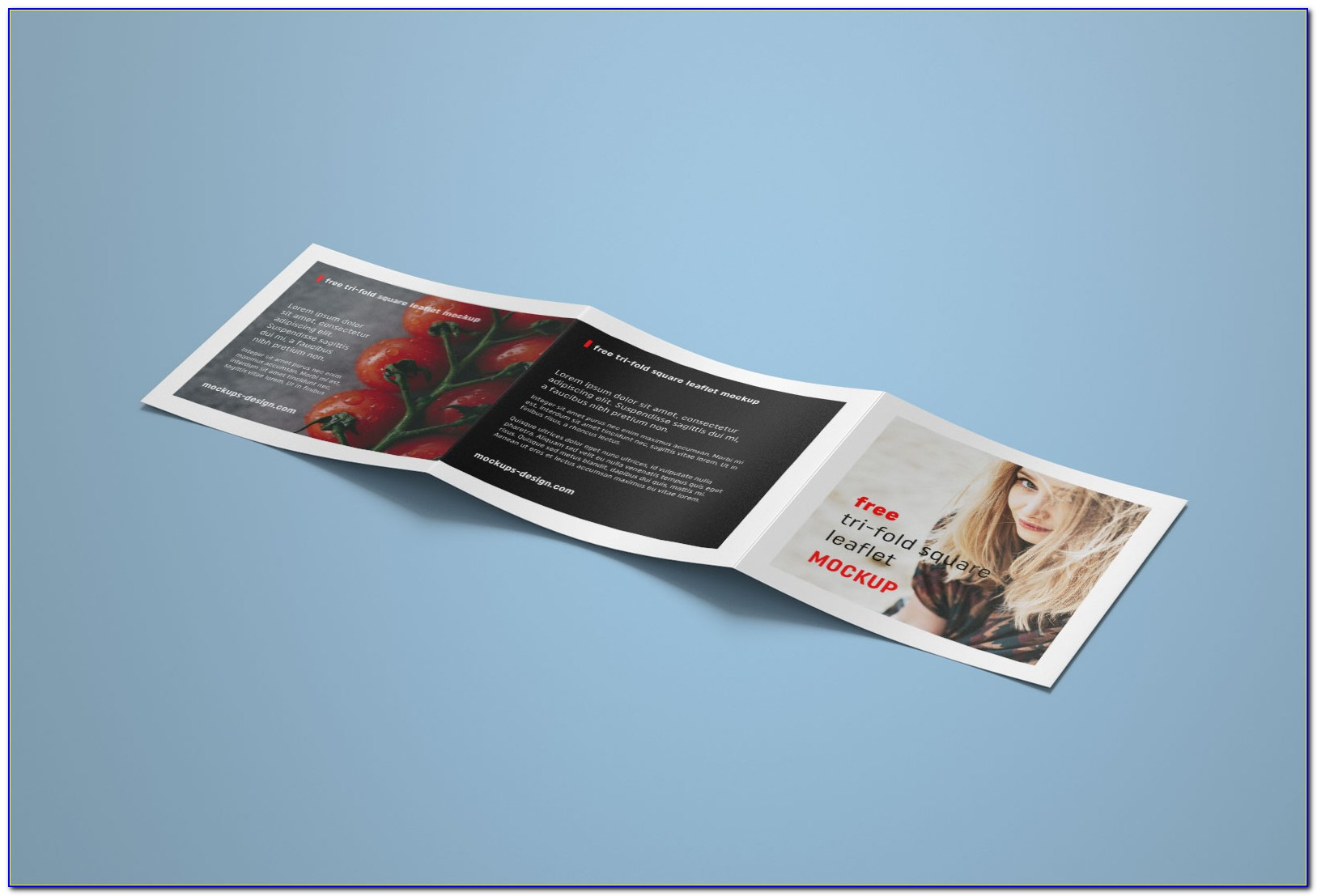 Square Trifold Brochure Indesign