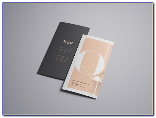 Tri Fold Brochure Mockup Psd Free