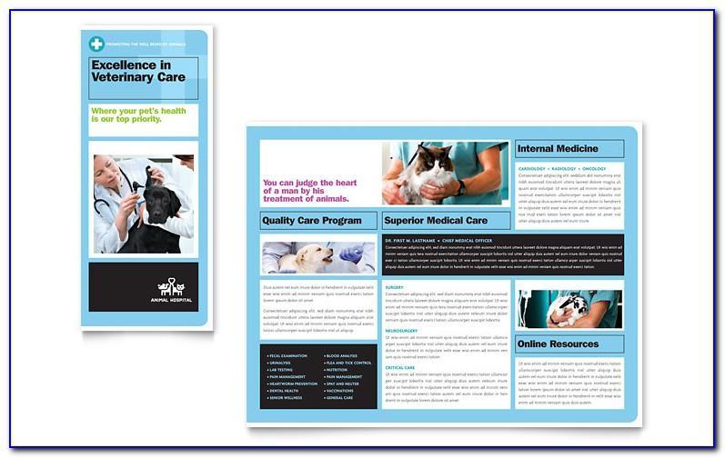 Veterinary Brochure Templates Free