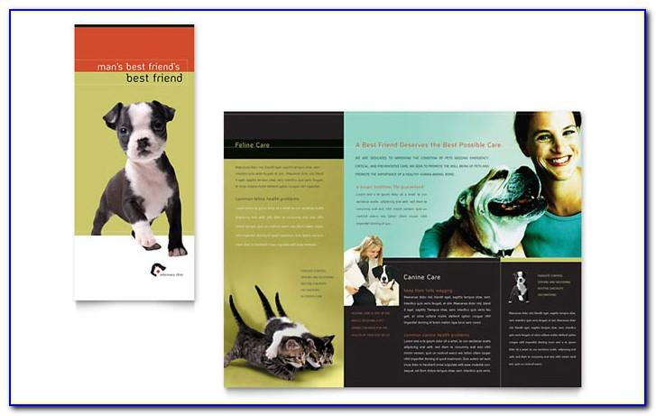 Veterinary Brochures Templates