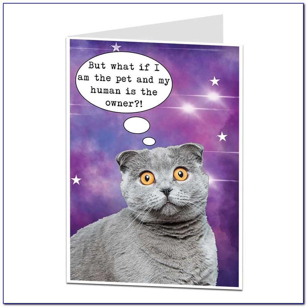Cute Cat Birthday Card Ideas