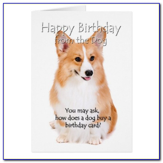 Free Corgi Birthday Ecards