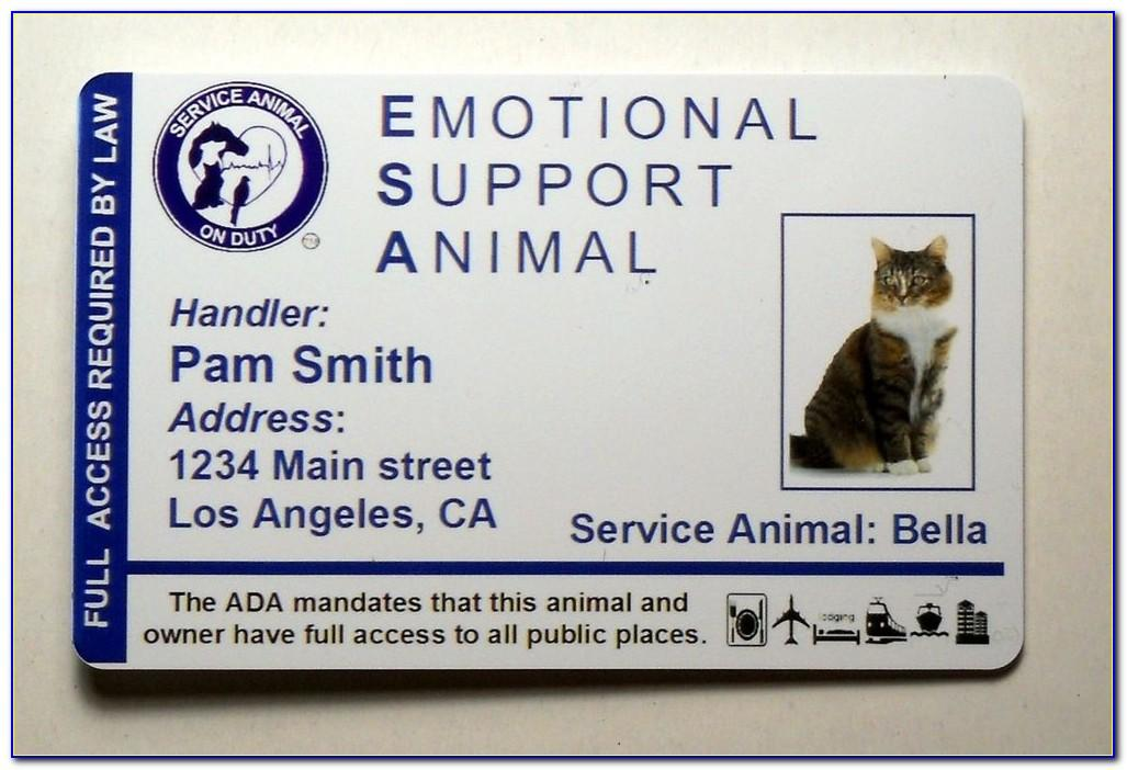 Free Emotional Support Animal Id Card Cat