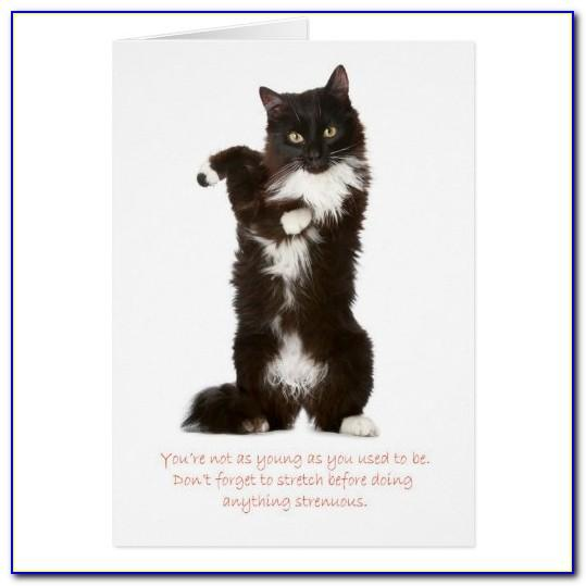 Funny Cat Cards Free