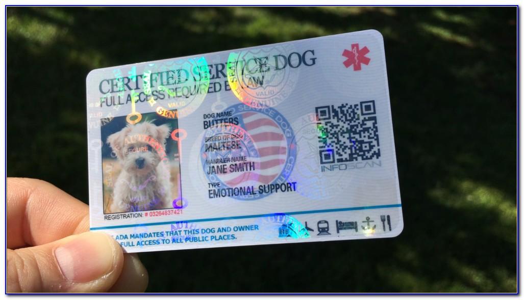 Order Free Netspend Card