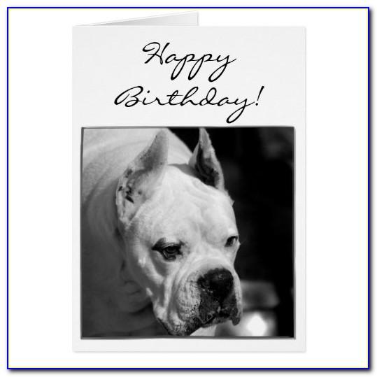 White Boxer Dog Birthday Card