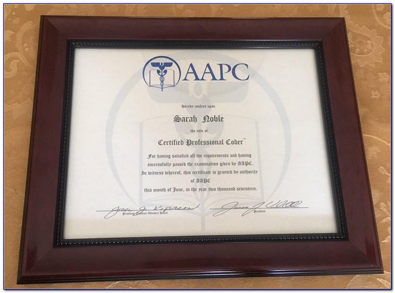 Aapc Coder Certification