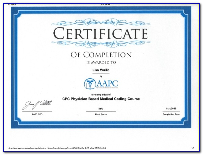 Aapc Coding Certification Course