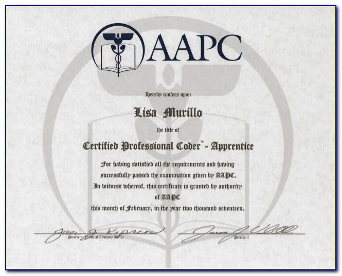 Aapc Coding Certification Practice Exam