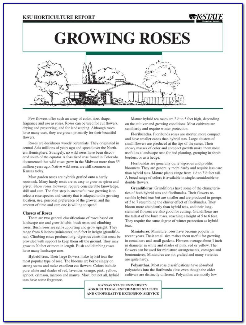 Arborists' Certification Study Guide Third Edition Pdf
