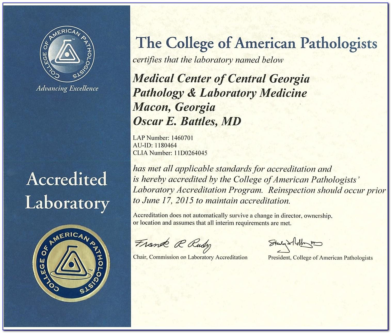 Ase Certification Schools In Miami