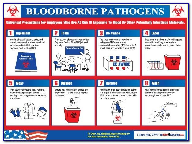 Bloodborne Pathogens Certification Renewal