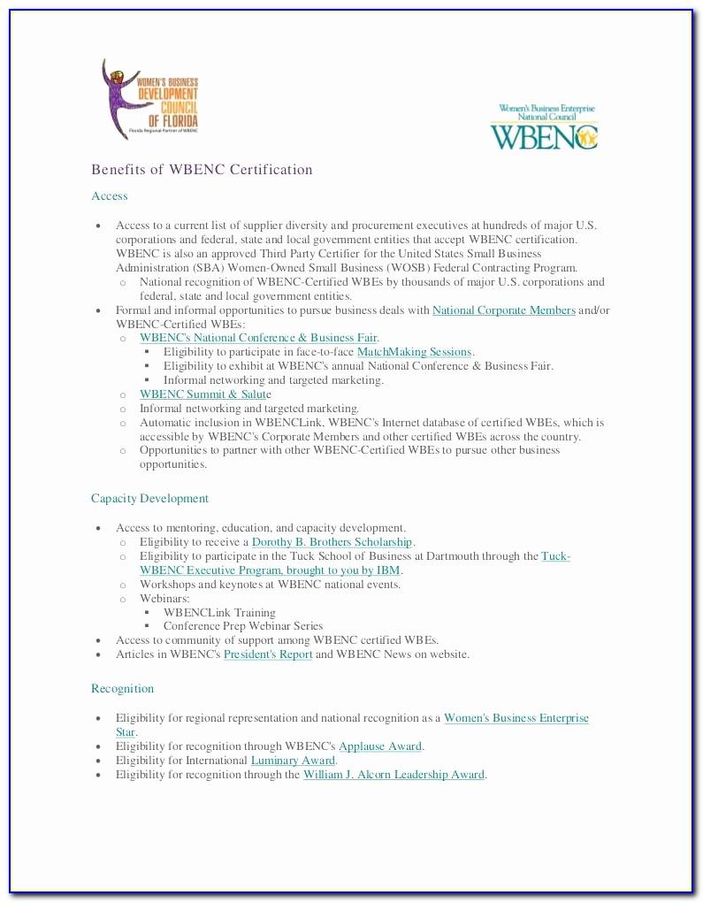 Brake And Light Adjustment Certificates