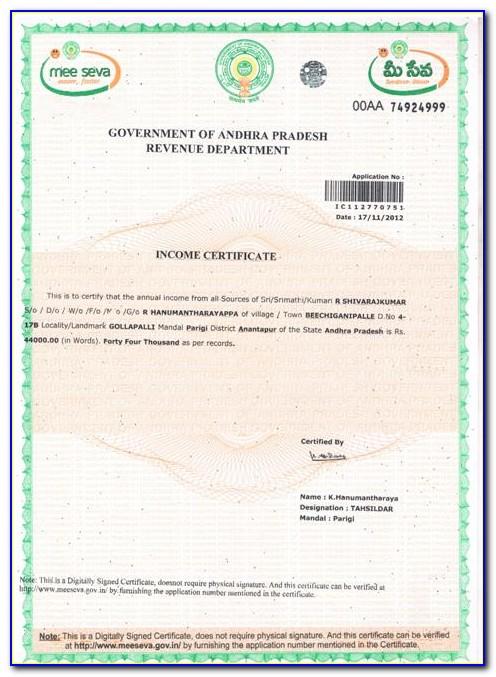 Business Tax Certificate