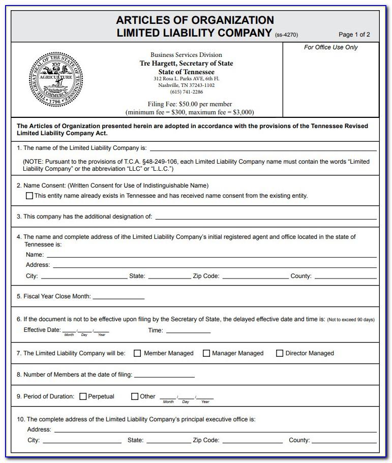 Delaware Certificate Of Formation Filing