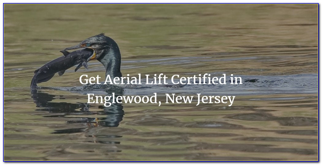 Forklift Certification New Jersey