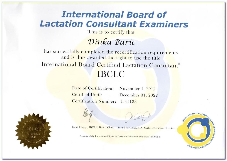 Lactation Consultant Certification Nj
