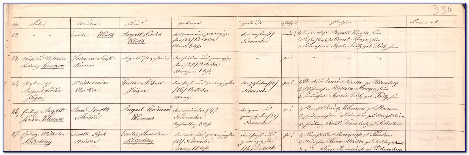 Mecklenburg County Birth Record