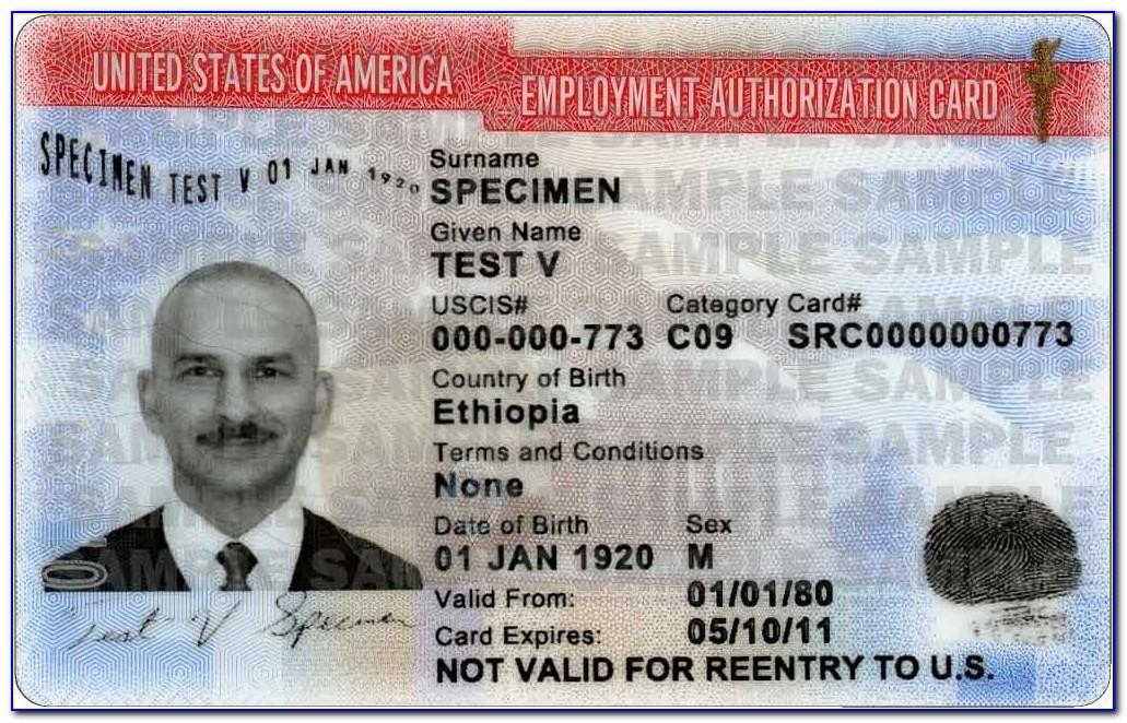 Naturalization Certificate Replacement Status