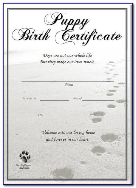 Puppy Birth Certificate Pdf