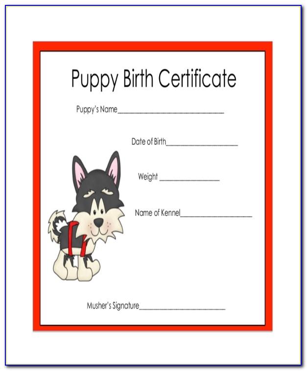 Rabies Vaccination Certificate